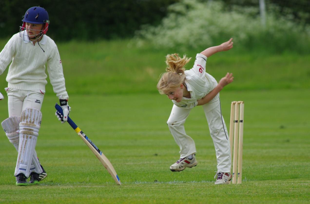 cricket-724620